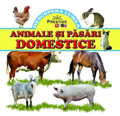 Animale si pasari domestice