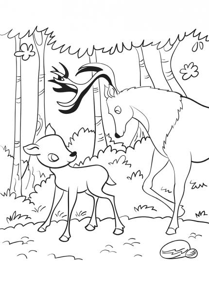 Bambi - carte de colorat